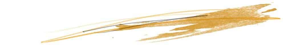 http://www.gnom-gnom.com/wp-content/uploads/2012/11/orange-divider.jpg