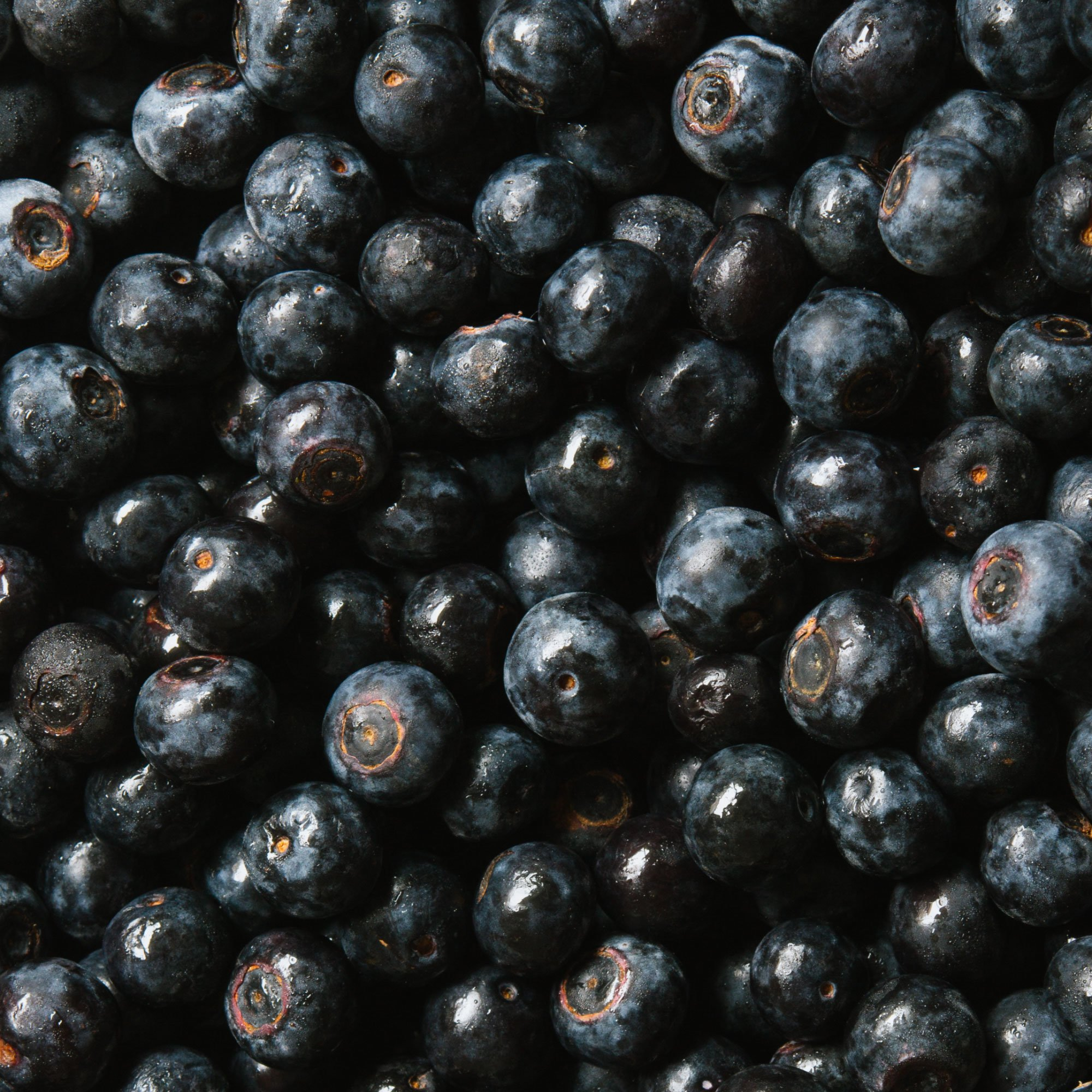blueberries | gnom-gnom.com